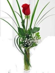 Cam içerisinde 1 kırmızı gül  Batman çiçek gönderme sitemiz güvenlidir
