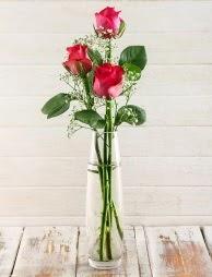 Cam içerisinde 3 kırmızı gül  Batman çiçek satışı