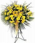 Batman yurtiçi ve yurtdışı çiçek siparişi  Sari kazablanka Ferforje