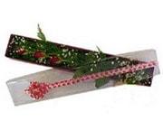 Batman hediye çiçek yolla  3 adet gül.kutu yaldizlidir.