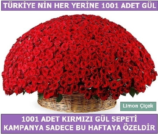 1001 Adet kırmızı gül Bu haftaya özel  Batman İnternetten çiçek siparişi