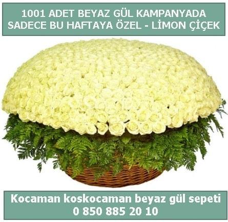 1001 adet beyaz gül sepeti özel kampanyada  Batman çiçek gönderme sitemiz güvenlidir