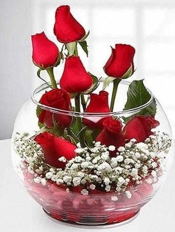Kırmızı Mutluluk fanusta 9 kırmızı gül  Batman çiçek siparişi sitesi