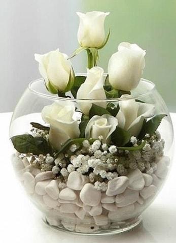 Beyaz Mutluluk 9 beyaz gül fanusta  Batman çiçek siparişi sitesi