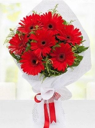 Kırmızı Gelbera Buketi  Batman internetten çiçek siparişi