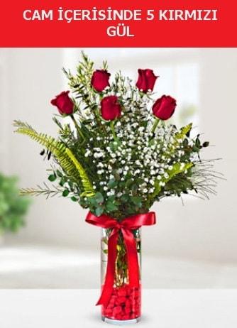 Cam içerisinde 5 adet kırmızı gül  Batman çiçek siparişi sitesi