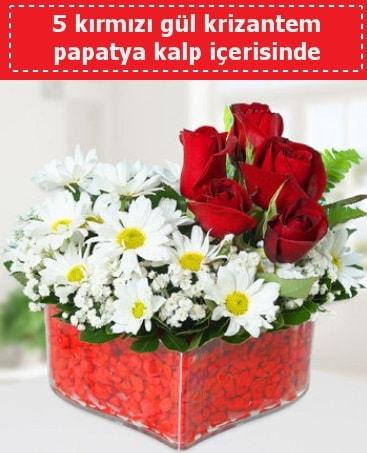 mika kalp içerisinde 5 kırmızı gül papatya  Batman çiçek gönderme