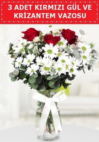 3 kırmızı gül ve camda krizantem çiçekleri  Batman çiçek gönderme