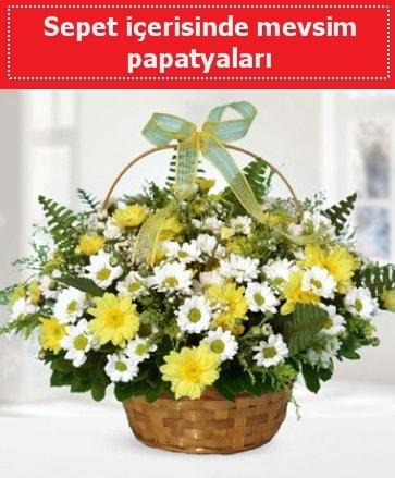 Sepet içerisinde mevsim papatyaları  Batman ucuz çiçek gönder