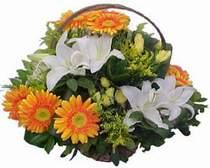 Batman online çiçekçi , çiçek siparişi  sepet modeli Gerbera kazablanka sepet